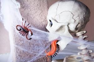 halloween14skeleton