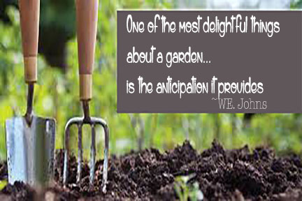 Imagination Matters The Garden