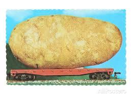 baked potato idaho russet food recipe