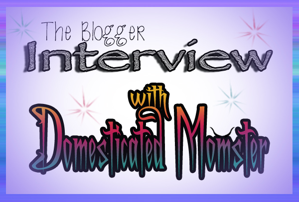 The Blogger Interview Domesticated Momster