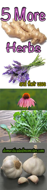 5 More Herbs And Their Uses #juicing #cleaneating #herbs