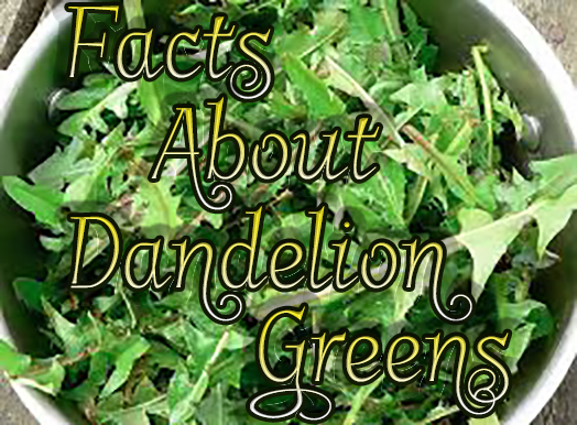 Facts Dandelion Greens Juicing Health #cleaneating