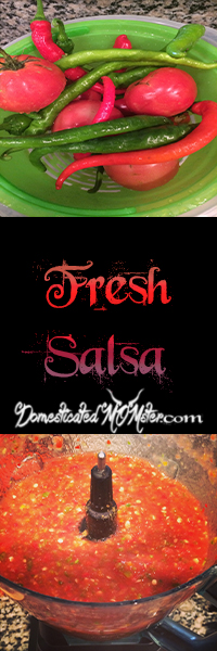That's A Wrap Salsa Fresh #cleaneating garden