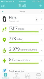 FitBit exercise tracker steps logging