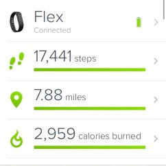 FitBit activity tracker steps goals miles calories burned