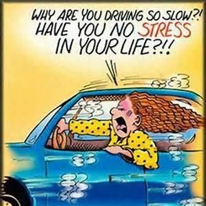 speeding images funny humor