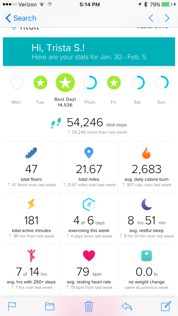 fitbit stats exercise tracker